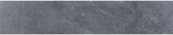 Asian Bluestone vijverrand blauw gezoet 3x20x100cm