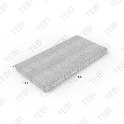 Verhardingsplaat ZHR 100x200x12cm