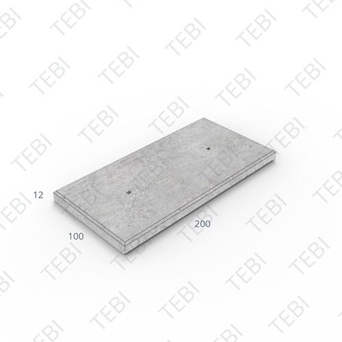 Industrieplaat ZHR 200x100x12cm Wap. ø6mm